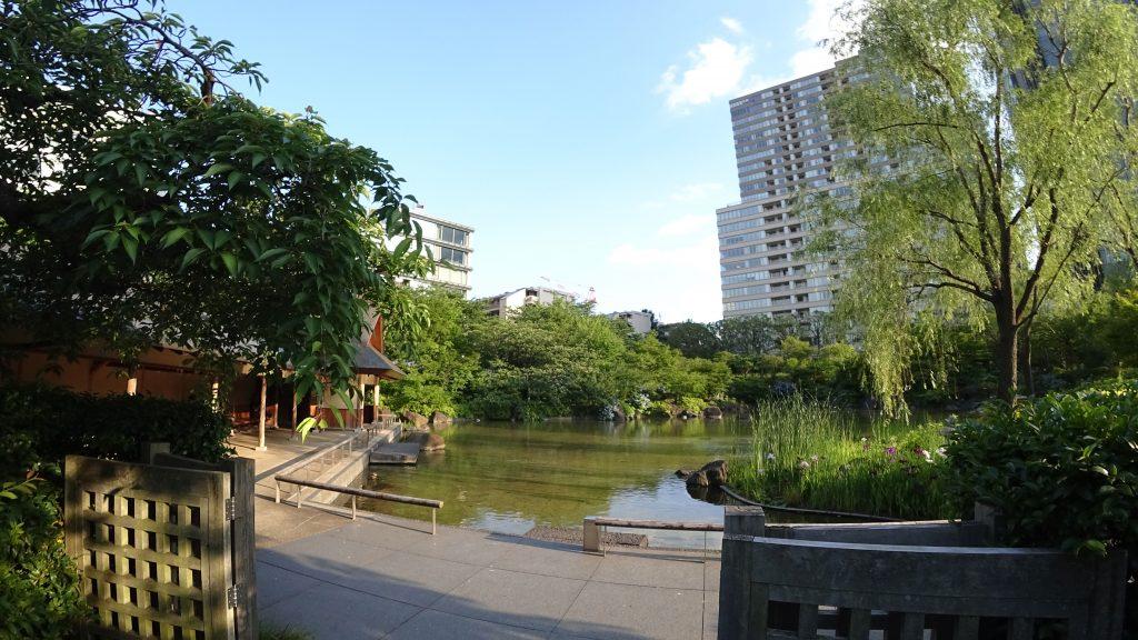 庭園1(ソニー)